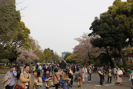 Tokyo, Japan - April 12, 2015: Many people come to travel at Ueno Zoo, Japans oldest zoo.
