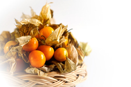 Cape gooseberry on white background and space for write wording, sweet juicy taste fruit, high vitamin, mineral fruit sold in market and department for making many kinds of dessert or fresh served Stock Photo