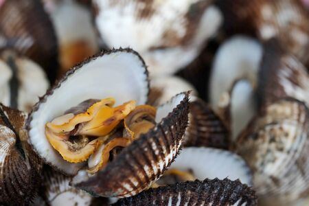 cockles, delicious sea food sold in seafood restaurant and market. Dirty and old sea food may cause bacteria infection and food toxicity Stock Photo