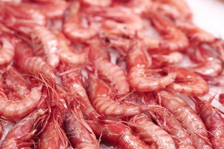central market: Mariscos, camarones, el Mercado Central, Mercado Central, Valencia, Comunidad Valenciana, Espa�a
