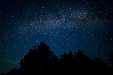 Night starry sky scene with milky way
