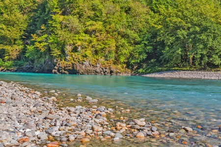 Mountain rivier met kiezel en stenen en het bos op de achtergrond