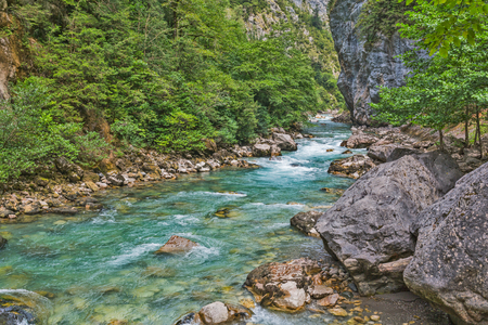 Mountain river flowing by the gorge with rocks and trees