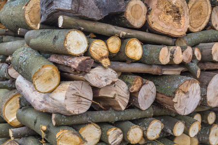 stack of firewood: Stack of firewood chopped logs close up view