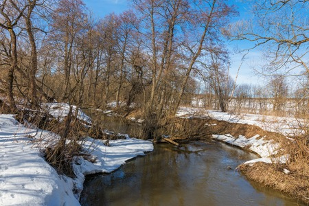 early spring snow: Forest river at early spring with snow at sunny weather