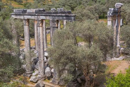 mugla: Temple of Zeus Lepsinos Euromus Mugla Province Turkey
