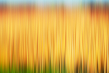 abstract paintings: Psychedelic background based on blured landscape image Stock Photo