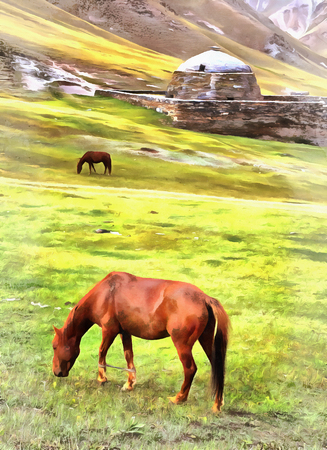 Horses at grasslsnd with old fortress on background