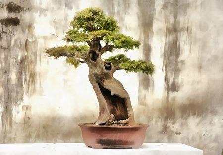 盆栽の木のカラフルな絵画 写真素材