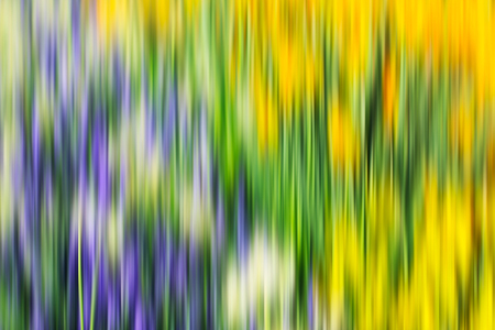 abstract paintings: Colorful psychedelic ornate background