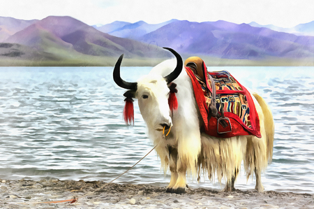 Colorful painting of domestic yak portrait Stock Photo