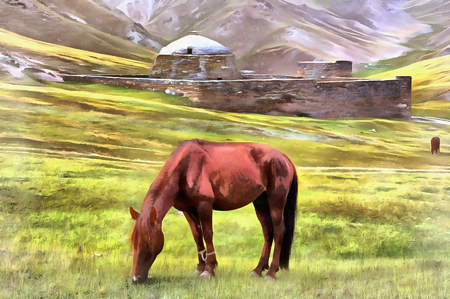 Horse at grassland with old fortress on background