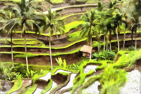 Colorful painting agricultural terraces Stock Photo