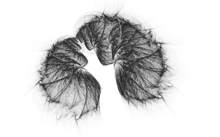 Monochrome abstract fractal illustration 免版税图像