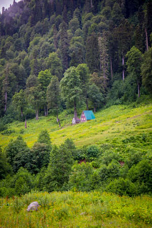 Beautiful scene with hut in the mountain summer forest Stock fotó