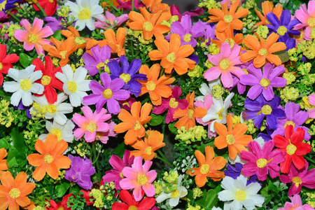 Beautiful colorful flowers background.