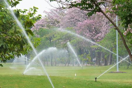 Tuinieren. Gazon sprinkler sproeien van water over groen gras. Irrigatiesysteem - techniek van het water geven in de tuin.