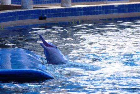 bottlenose: Bottlenose dolphins, oil paint style