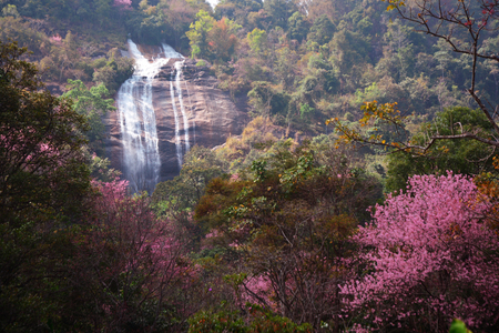 Siriphum waterfall at National park in North of Thailand. ** note select focus with shallow depth of field:ideal use for background. Stock Photo - 69789399