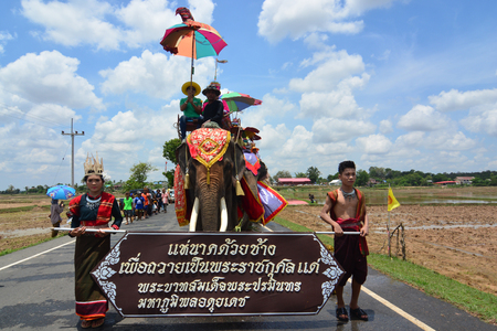 SURIN, THAILAND, MAY 9, 2017 : Ordination Parade on Elephant's Back Festival is when elephants parade and carry novice monks on their backs. This event takes place at Wat Chang Sawang