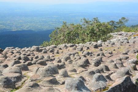 Lan Hin Pum Pum [Nodule Rock Field] At Phu Hin Rong Kla National Park In Thailand