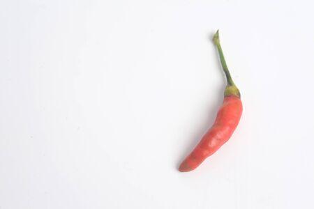 Chilli Padi, Bird's Eye Chilli, Bird Chilli, Thai pepper or Capsicum annuum