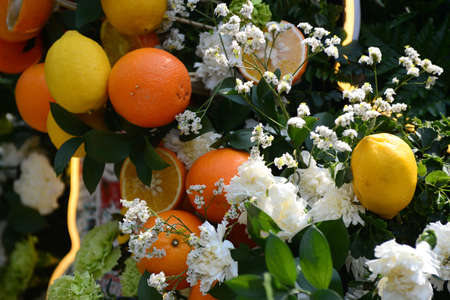 Lemon and oranges to decorate in flower arrangements 版權商用圖片