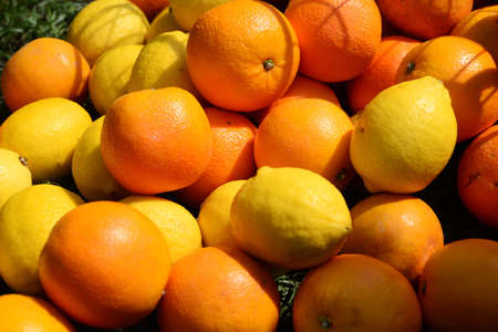 Lemon and oranges, note  select focus with shallow depth of field Stock fotó