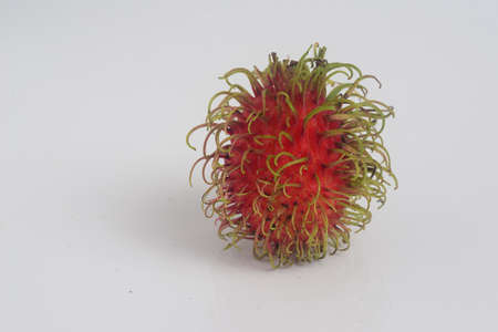 rambutan on white background with copy space for text