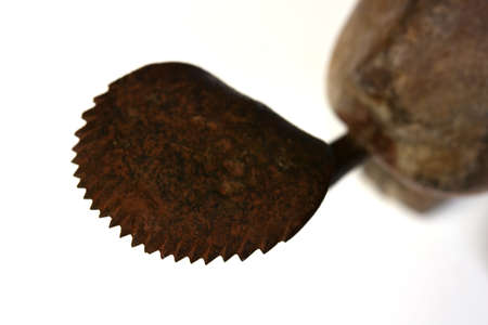 sharp teeth of the old metal blade on coconut grater