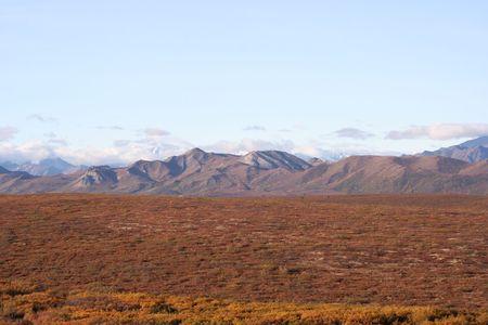 Denali National Park, Alaska photo