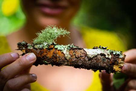 Moss growing on fallen tree branch held by female hands Reklamní fotografie
