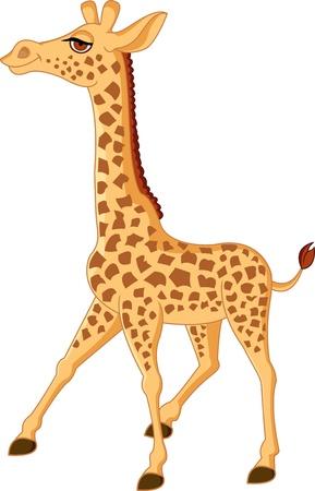 jirafa caricatura: Jirafa de dibujos animados