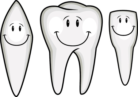 floss: Tooth cartoon collection  Illustration