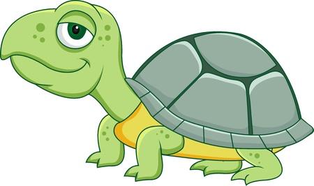 tortuga: Tortuga de dibujos animados Vectores