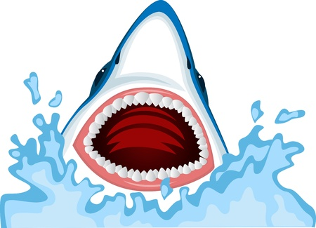 Angry shark  Stock Vector - 13446415