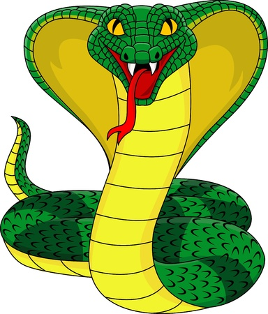 serpent � sonnette: King Cobra Illustration