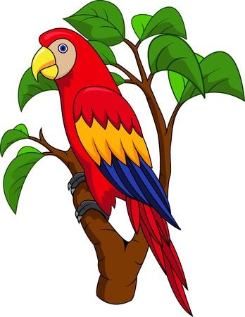 guacamaya caricatura: Guacamayo de dibujos animados de aves