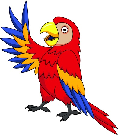 rain cartoon: Macaw bird cartoon