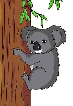 koala: Koala cartoon  Illustration