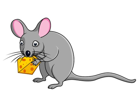 white cheese: rat with cheese  Illustration