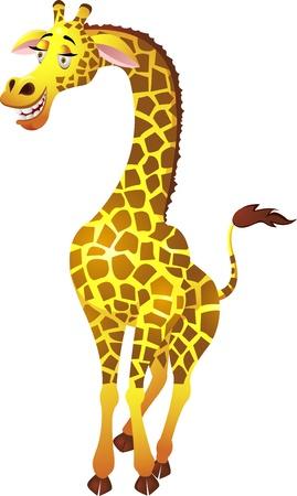 jirafa cute: Jirafa de dibujos animados