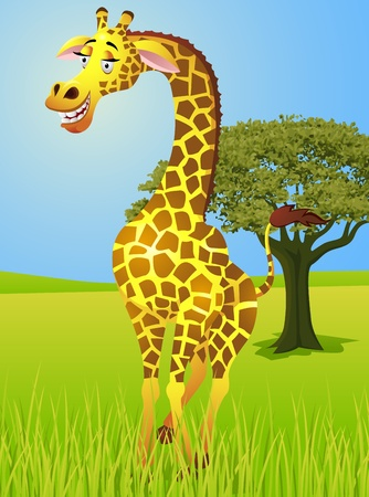 Giraffe in the jungle  Vector
