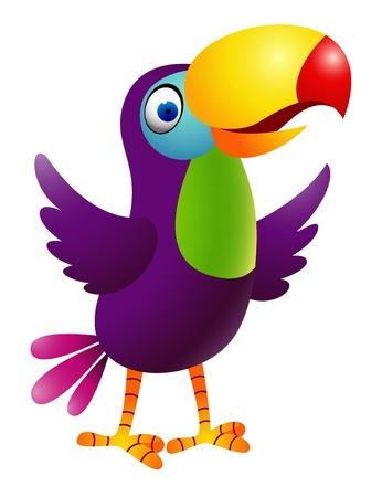 Toucan Vogel Illustration