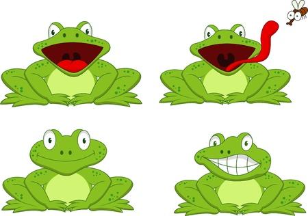 rana caricatura: De dibujos animados rana divertida