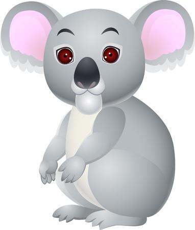 koala: Koala de dibujos animados se sienta