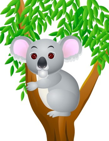 koala cartoon Stock Vector - 13494847