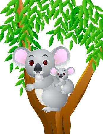 nursing mother: Madre y beb� koala Vectores