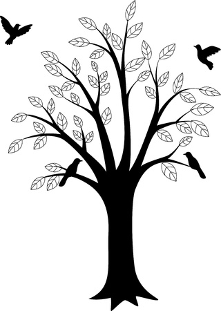 birch forest: Tree silhouette and bird
