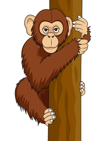 chimp: funny chimpanzee Illustration